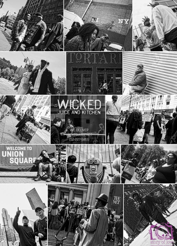 new york collage